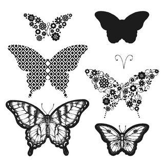 Papillon Potpourri Image