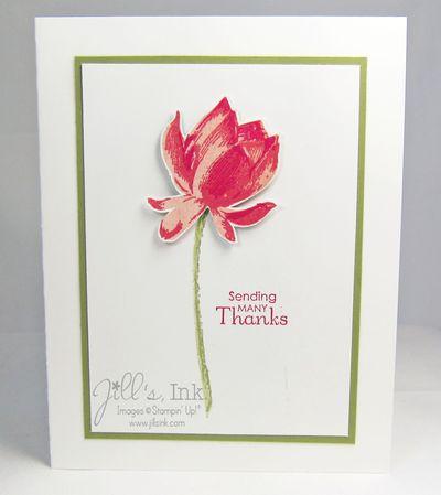 Lotus Blossom MnT