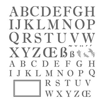 Sophisticated Serifs Image